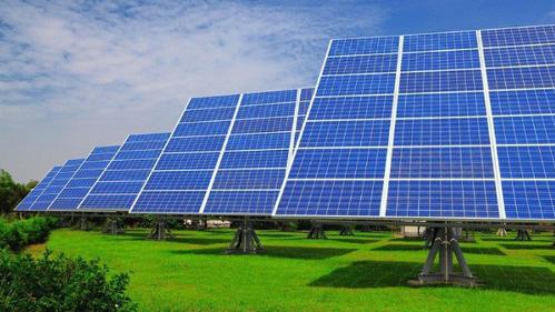 Đại gia cá tầm đầu tư 1.200 tỷ đồng vào điện mặt trời
