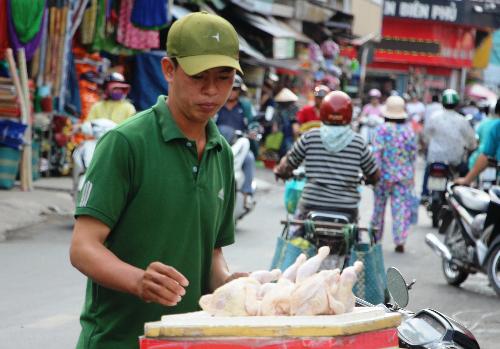 Mỗi con gà mái đẻ có giá 70.000 đồng một con. Ảnh: Hồng Châu.