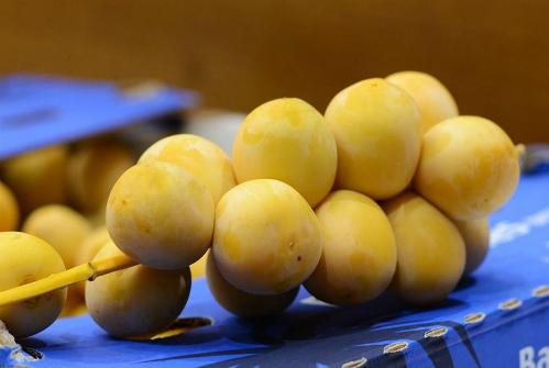 Trước đây thị trường chỉ có chà là khô nhưng nay trái tươi đã ồ ạt được vận chuyển về vì nhu cầu cao. Ảnh: NX.