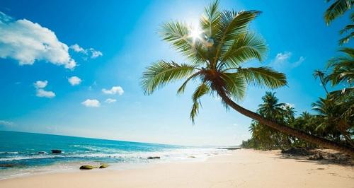 Cam Ranh sở hữu bãi biển đẹp trải dài, phù hợp phát triển các loại hình bất động sản nghỉ dưỡng, trong đó có nhà phố biển. Website: www.nhaphobiencamranh.vn. Hotline: 0933335856.
