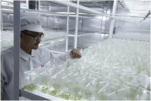 Elink luôn có sự đầu tư nghiêm túc và ứng dụng công nghệ hiện đại của Nhật Bản vào trong quá trình sản xuất.