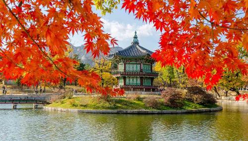 Tuor Hàn Quốc được Sao Biển Travel khuyến mãi trong tháng 9 với giá cực ưu đã