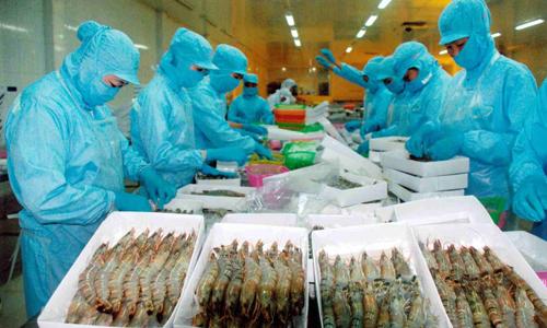 Xuất khẩu tôm sụt giảm khiến thuỷ sản Việt Nam khó mục tiêu xuất khẩu 10 tỷ năm nay.