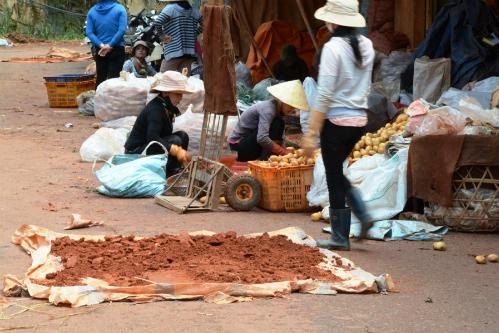 Chợ nông sản Đà Lạt.