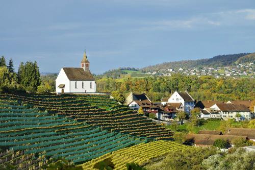 Một góc làng Rheinau tại Thụy Sỹ. Ảnh: AFP