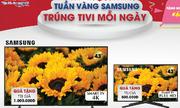 https://kinhdoanh.vnexpress.net/tin-tuc/doanh-nghiep/doanh-nghiep-viet/co-hoi-trung-tv-khi-mua-sam-tai-thien-hoa-3814861.html