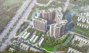 Rever phân phối căn hộ SaFira Khang Điền
