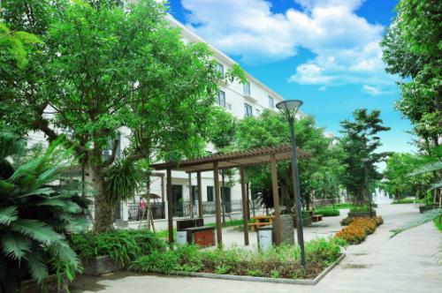 Không gian nhiều mảng xanh tại dự án nhà vườn Pandora 53 Triều Khúc.