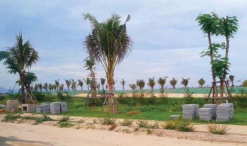 Sức hút của dự án Para Grus thuộc tổ hợp KN Paradise tại Cam Ranh - ảnh 2