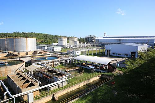 Nhà máy Nhiên liệu sinh học Dung Quất đã cho ra dòng sản phẩm thương mại.