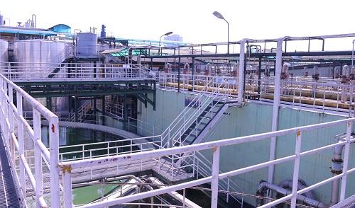 Bể nhận nước thải và tiền xử lý, khử nitrat sinh học (vi khuẩn chuyển hóa hợp chất nitơ trong nước thành nitơ tự do).