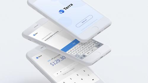 Dự án Terra kỳ vọng tạo ra được một loại tiền mã hóa ổn định, thở thành lựa chọn thanh toán cho các nền tảng thương mại điện tử lớn trên toàn cầu. Ảnh: Terra