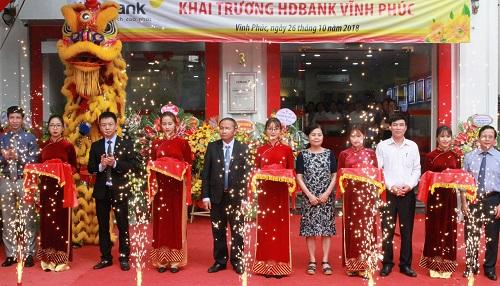 Việc mở chi nhánh Vĩnh Phúc nằm trong kế hoạch đẩy mạnh độ phủ sóng trên toàn quốc nhằm tăng cường phục vụ người dân Việt Nam.
