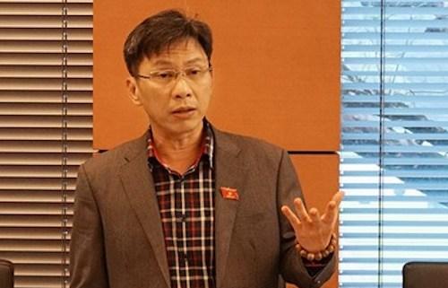 Đại biểu Nguyễn Việt Dũng - Giám đốc Sở Khoa học công nghệ TP HCM. Ảnh: Q.H