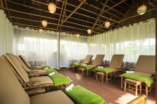 Tại đây cũng có Nypa Organic Garden - một vườn rau với diện tích lên tới 3.500m2, cung cấp rau quả sạch cho toàn bộ hệ thống nhà hàng resort. Ngoài ra, khách tham quan ngắm cảnh, uống trà và có thể trải nghiệm trồng cây xanh.