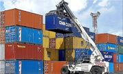 50 container hải sản bị ứ tại cảng