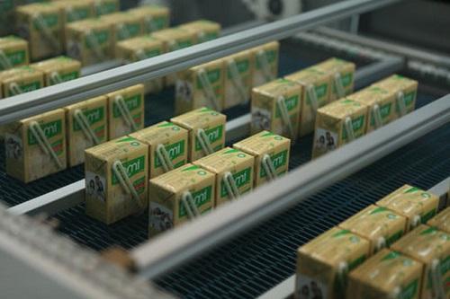 Dây chuyển sản xuất sữa đậu nành của Đường Quảng Ngãi.