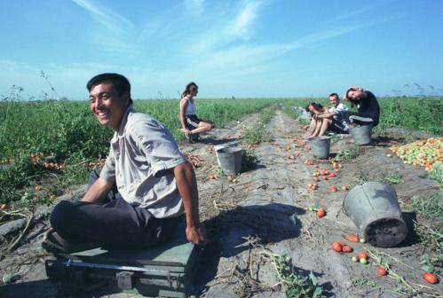 Những người nông dân Trung Quốc. Ảnh: Oleg Nikishin