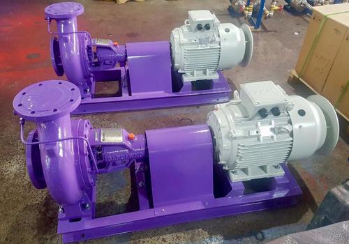 Động cơ điện chính hãng Elektrim được lắp đặt trong hệ thống bơm.