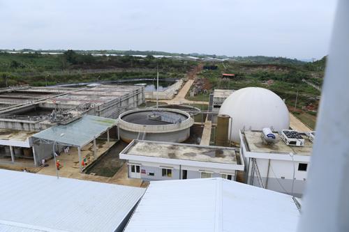 Khu vực xử lý chất thải chăn nuôi trong trang trại MNS Farm tại Nghệ An.