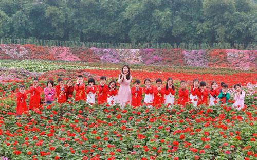 Du khách có thể chụp hình bên những vườn hoa muôn màu muôn vẻ. Nguồn: Huy Đỗ.