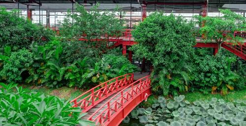 Maxport Limited Việt Namnổi tiếng là doanh nghiệp xanh với môi trường làm việc sinh thái