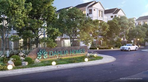 Tận hưởng cuộc sống xanh, trong lànhngay tại tổ ấmDahlia Homes.