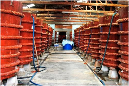 Một cơ sở sản xuất nước mắm truyền thống tại Phú Quốc.