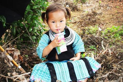 10 năm mang sữa cho 3.000 trẻ em nghèo vùng cao của Mộc Châu Milk