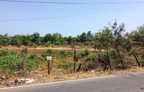 Lô đất 10.000 m2 mặt tiền Duyên Hải được chào giá 110 tỷ đồng tại Long Hòa, Cần Giờ. Ảnh chụp màn hình tin rao bán