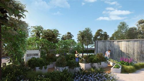 Những vườn rau hữu cơ cũng tạo cơ hội để cư dân có thể cùng nhau giao lưu, chia sẻ đam mê vườn tược và vun đắp tình cảm cộng đồng. (Ảnh phối cảnh)