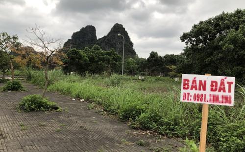 Biển bán đất được cắm ở nhiều lô đất trong một dự án tại trung tâm thị trấn Cái Rồng, huyệnVân Đồn. Ảnh: Anh Tú