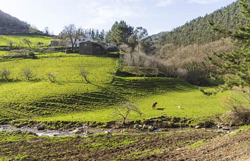Một góc thung lũng là Alberto Hidalgo đã mua. Ảnh: Bloomberg