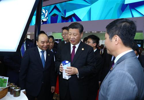 Chủ tịch Trung Quốc Tập Cận Bình tìm hiểu sản phẩm sữa của TH tại hội chợ CIIE 2018.