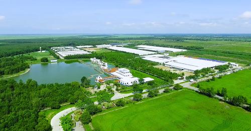 Resort bò sữa Tây Ninh mới khánh thành của Vinamilk có quy mô 8.000 bò bê với tổng vốn đầu tư ban đầu lên đến 1.200 tỷ đồng.