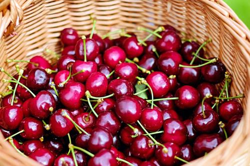 Cherry Australia được ưa chuộng ở Việt Nam.