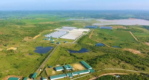 Trang trại của GreenFeed được xây dựng trên khu đất cao ráo khô thoáng, vành đai cách ly 10km so với vùng dịch tễ, 5km với trang trại khác, 3km với nhà dân giúp giảm thiểu dịch bệnh lây nhiễm vào trại.