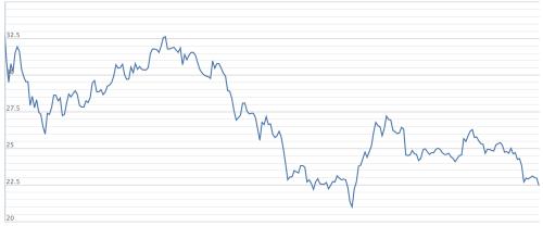 Diễn biến cổ phiếu HPG một năm gần đây. Ảnh: VNDirect