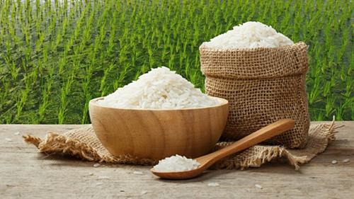 Xuất khẩu gạo giảm.