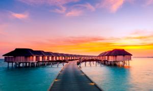 Cơ hội du lịch tại Maldives cùng Hoài Linh, Tóc Tiên khi ăn mì Hảo Hảo