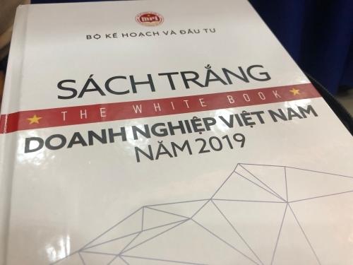 Sách trắng doanh nghiệp Việt Nam năm 2019. Ảnh: MS