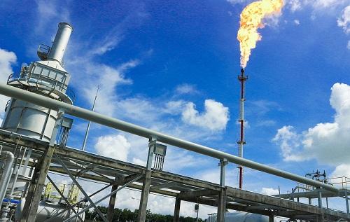 PV Gas thuộc 100 doanh nghiệp đứng đầu bảng xếp hạng Nikkei Asia300