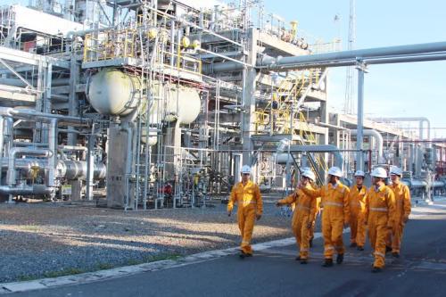 Tập đoàn Dầu khí Việt Nam đồng hành cùng chương trình Trái đất xanh - 1