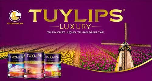 Bộ nhận diện thương hiệu hoàn toàn mới của dòng sơn Tuylips Luxury.