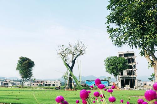 Một góc công viên xanh tại Khu đô thị Kosy Lào Cai.