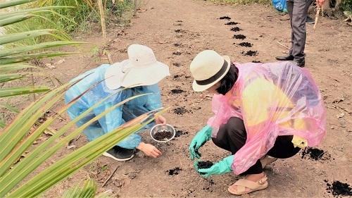 Các tình nguyện viên trồng cây đậu bắp tại vườn nhà các hộ nông.