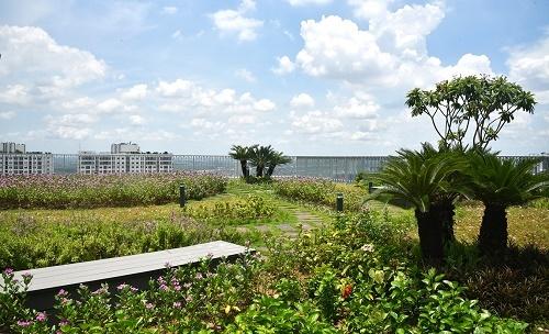 Một góc của khu vườn chân mây với tầm nhìn panaroma toàn thành phố