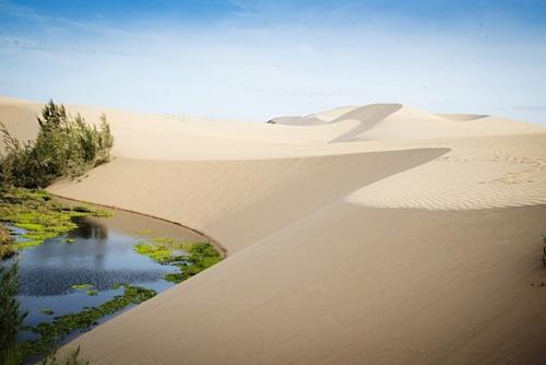 Những đồi cát điểm hút du lịch đặc sắc Bình Thuận