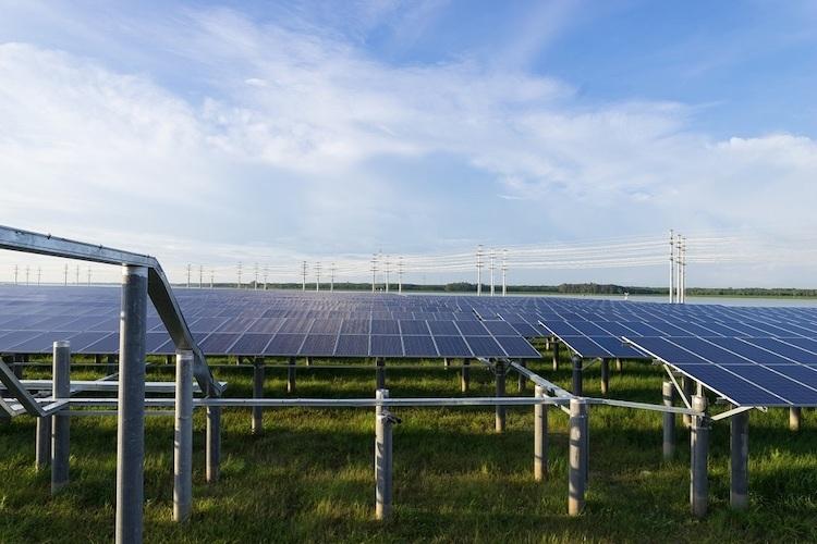 Các tấm pin năng lượng mặt trời tại cụm nhà máy điện Dầu Tiếng.