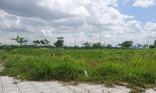 Đất nền dự án tại khu Đông TP HCM. Ảnh: Vũ Lê